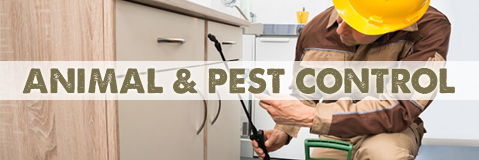 Pest Control and Animal Management