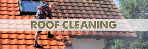Roof Cleaners and Protection