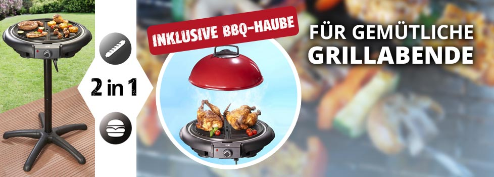 Standgrill 2 in 1
